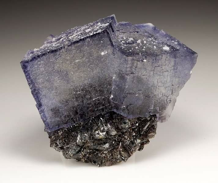 Fluorite with Sphalerite | #Geology #GeologyPage #Mineral Location: Elmwood Mine, Smith Co., Tennessee, USA Size: 8.0 x 7.0 x 4.0 cm (small-cabinet) Photo Copyright © Weinrich Minerals Geology Page www.geologypage.com