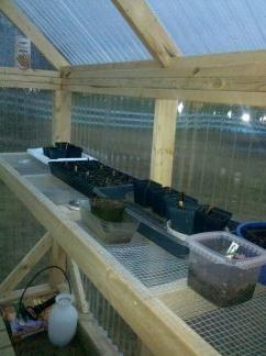 71aec46d07f7fa6cd8263e24c9b9103e - 25+ Small Greenhouse Shelving Ideas PNG
