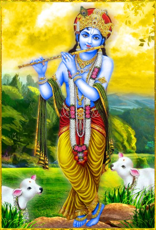 """✨ SHRI KRISHNA ✨http://careforcows.org/""""Although one may neutralize the reactions of sinful life through austerity, charity, vows and other such methods, these pious activities cannot uproot the material desires in one's heart. However, if one serves the lotus feet of the Personality of Godhead, he is immediately freed from all such contaminations.""""~Srimad Bhagavatam 6.2.17"""
