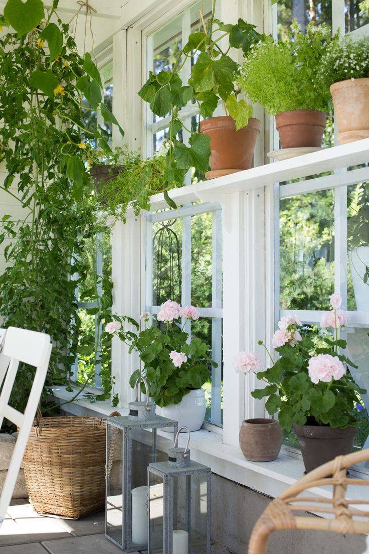 best 25 scandinavian greenhouses ideas on pinterest