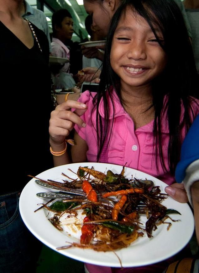 Entomophagy--eating insects as an idea for world food production