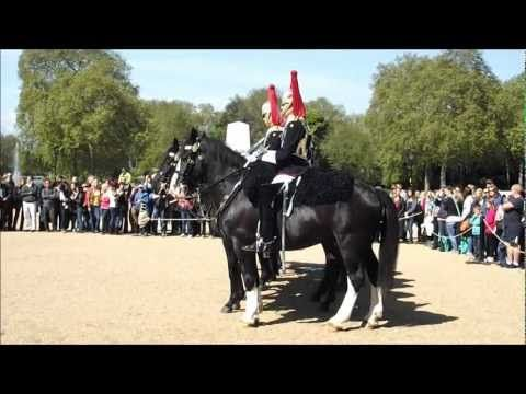 Changing the Guard - Horse behaving badly - Horse Guards Parade - Whitehall - YouTube