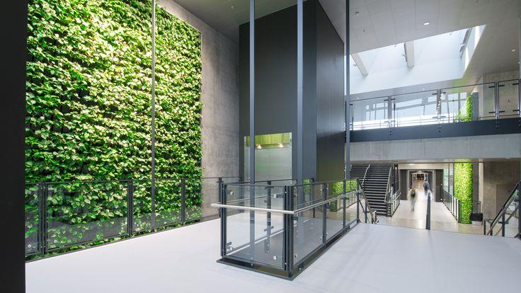 Syddansk Universitet - Natural Greenwalls