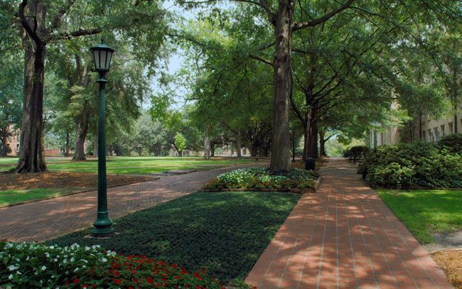 MARY: The Campus GREEN