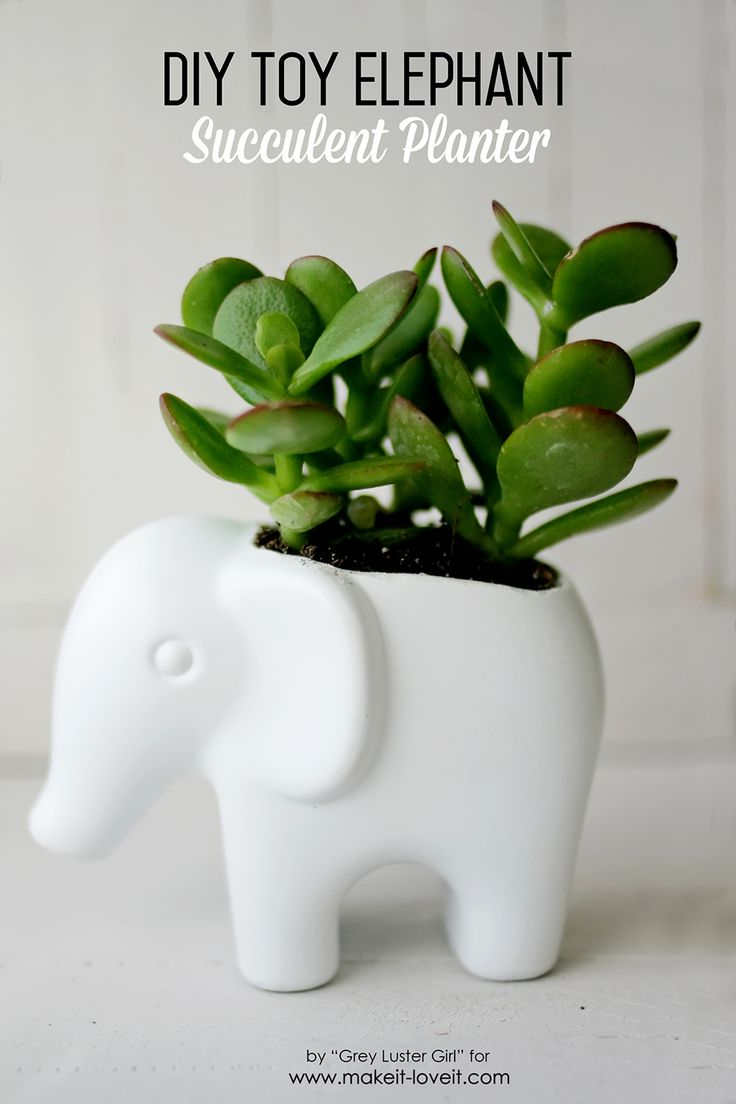DIY Toy Elephant Succulent Planter. Turn an old baby toy into a darling modern succulent planter.