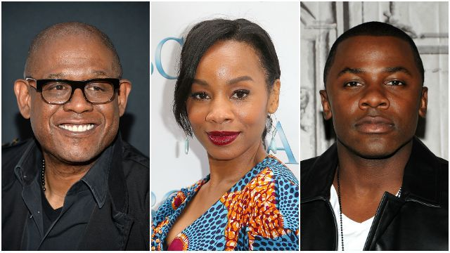 A+E Networks has added Forest Whitaker, Anika Noni Rose and Derek Luke to the star-studded cast of the 'Roots' remake... http://www.thebloggingqueen.website/117-2/