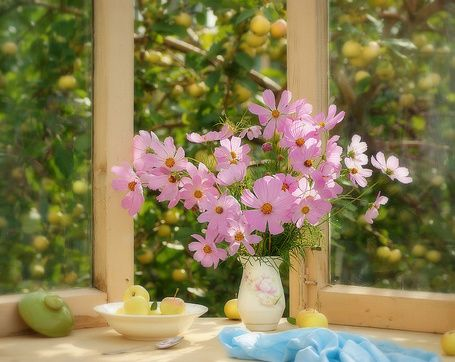 У раскрытого окна стоит ваза с розовыми цветами и тарелка с яблоками, за окном видны яблоневые деревья. Фотограф olemela