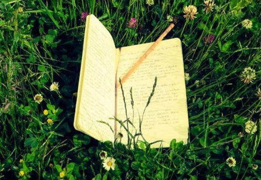 Η επιθυμία μας να κυριαρχήσουμε στο #περιβάλλον μας και να το αλλάξουμε μπορεί να μας απομακρύνει από το να βρούμε την πραγματική μας φύση (Thompson, 2014).  ......Η επαφή με τη #φύση μπορεί να μας βοηθήσει να συνδεθούμε ξανά με τον εαυτό μας.  _______________________ Από τη Δήμητρα Διδαγγέλου #write #nature #psychology #self #mood http://fractalart.gr/lexeis-fysi/
