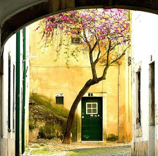 Alfama - Lisbon - PORTUGAL