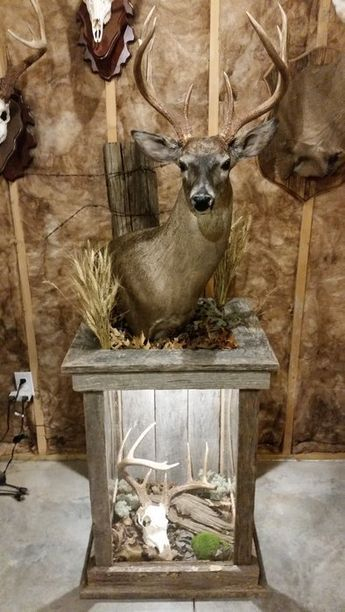 Barnwood Pedestal For Whitetail Mount Hunting Cabin