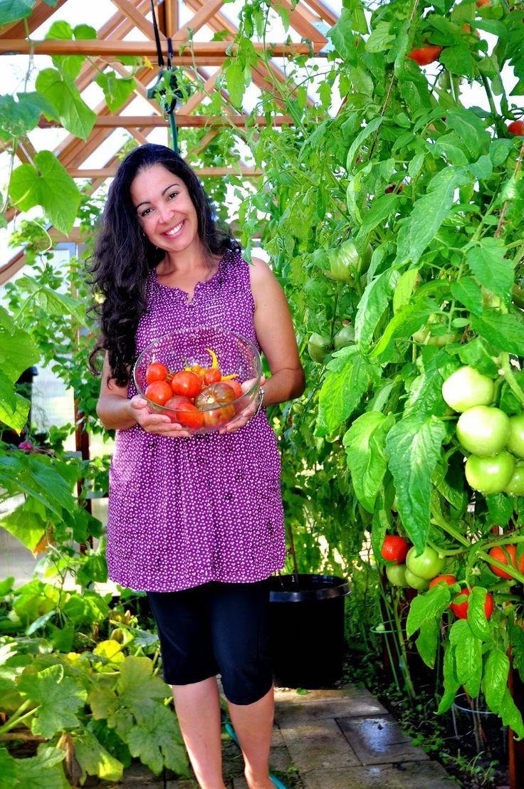 Hortas organicas e alimentacao saudavel.