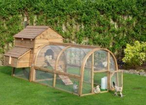 Chicken Run / Pet Run - Chicken Coop & Houses - Custom Sheds - Cat Runs - Dog Kennels - Curved Garden Buildings