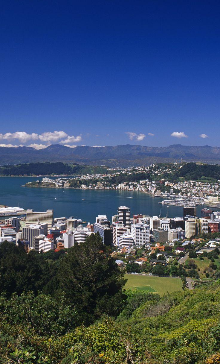 View of Wellington, Northland, New Zealand