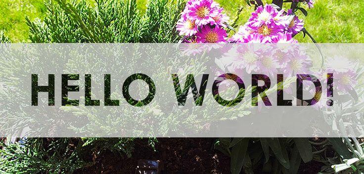 MyMine - Mine of Ideas: Hello world!