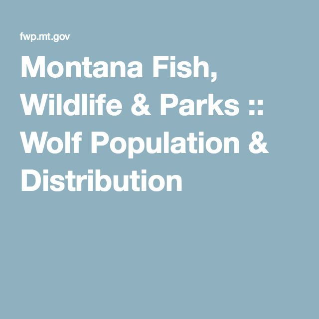 MONTANA  Fish, Wildlife & Parks :: Wolf Population & Distribution