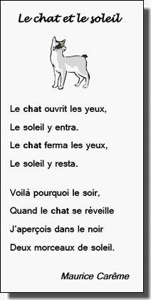 Voici une poésie de Maurice Carême, qui illustre bien ces petits points brillants qu'on voit parfois la nuit dans le regard fuyant d'un chat de passage...