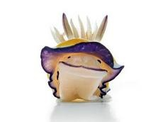 Another happy species...the toxic nudibranch.