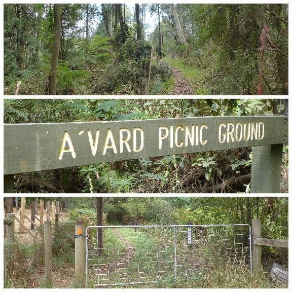 Dandenong Ranges Tourist Track – Sassafras to Emerald – 15 km one way. From Sassafras to Emerald, the Dandenong Ranges Tourist Track is a 5 hour hike through superb forest, crossing str…