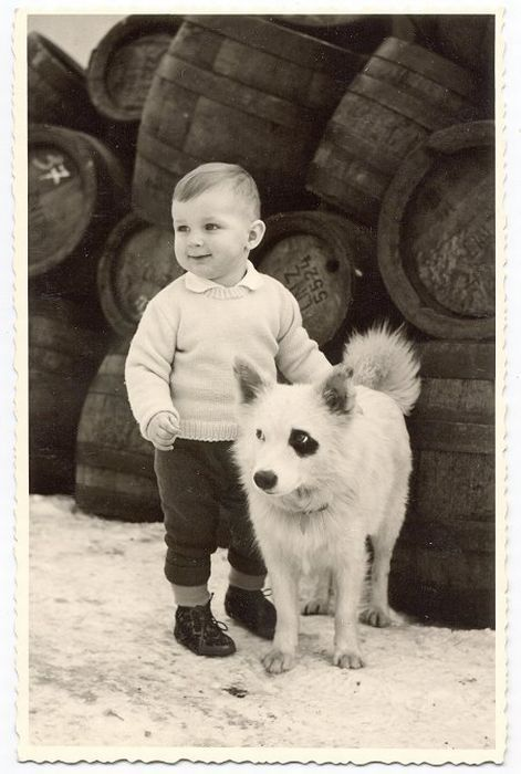 +~+~ Vintage Photograph ~+~+    Sweet boy and pup with black patch around his eye.