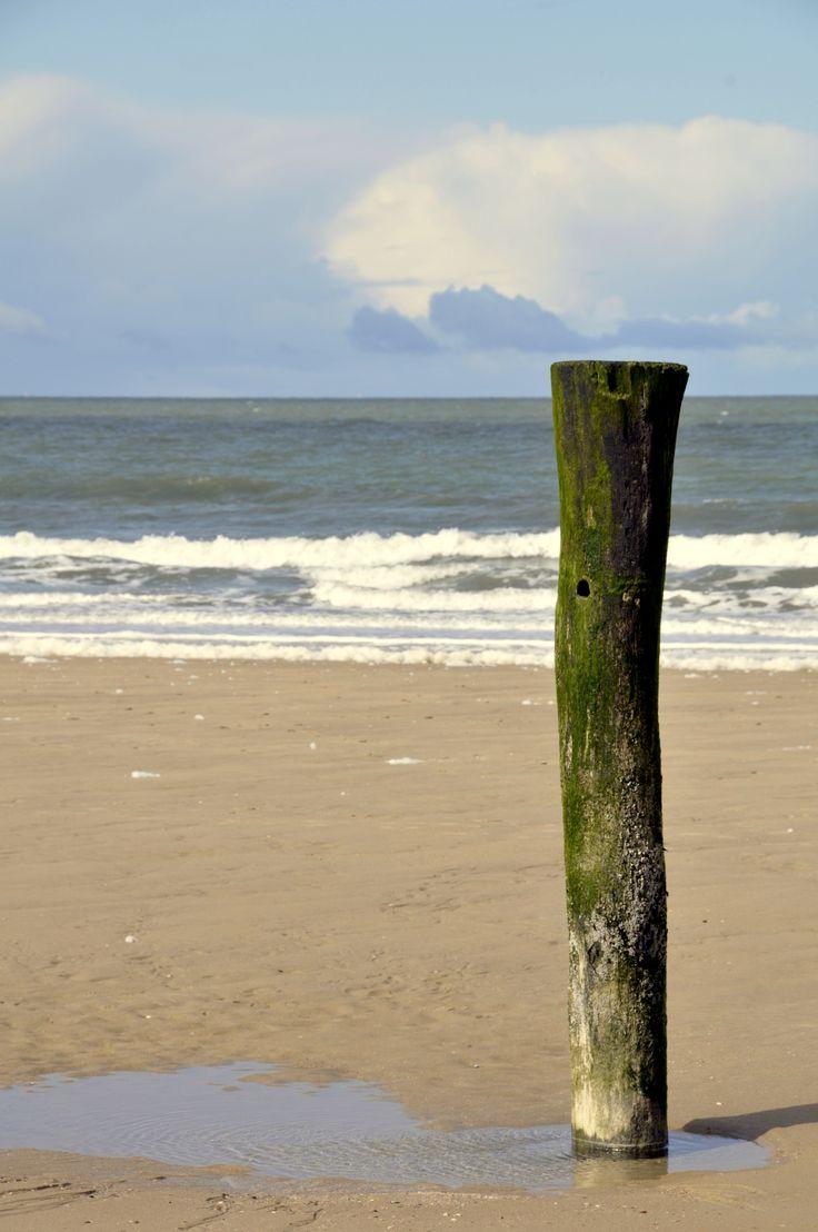 Zee en strand; de branding