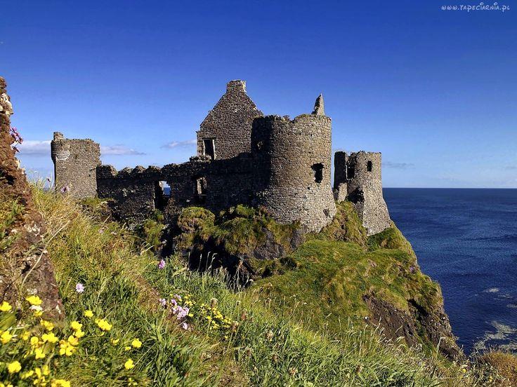 Zamek, Dunluce, Ruiny, Morze, Łąka, Irlandia, Północna