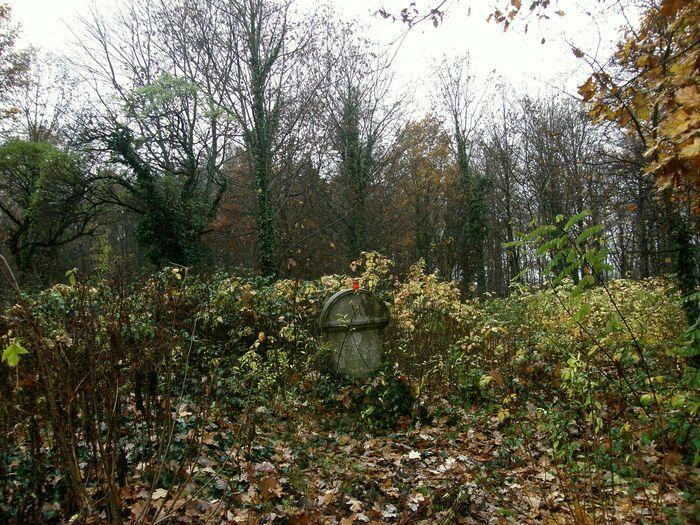 Jeden z posledních náhrobků. Hřbitov Bohnice