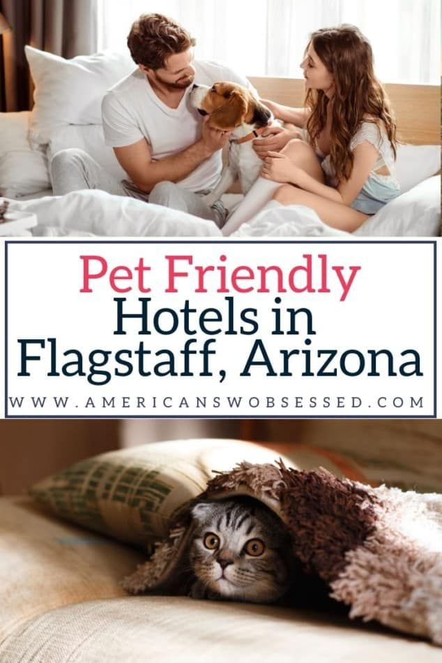 Flagstaff Pet Friendly Hotels American Sw Obsessed In 2020 Pet