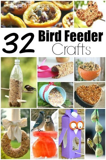 32 Easy homemade bird feeders! Inexpensive projects using common household materials. Terrific ideas for all ages. Some are easy enough for toddlers and others are perfect for teens or crafty grown-ups. Great way to help your neighbourhood birds make it through winter, and fun way to learn about the birds native to your area. - Happy Hooligans