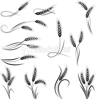 Wheat ornament Royalty Free Stock Vector Art Illustration