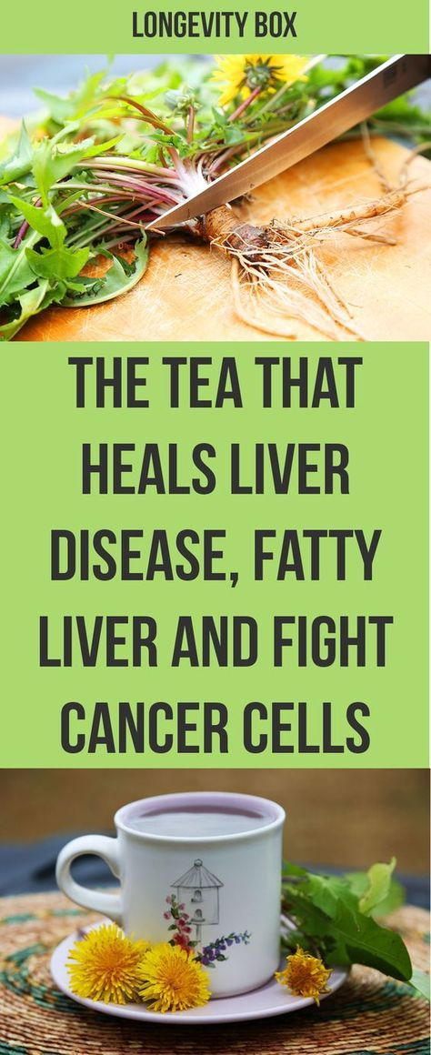 The Tea That Heals Liver Disease Fatty Liver and Fight Cancer | Dandelion root has taraxacerin, a bitter compound that acts to increase the flow of bile that is released by the gallbladder and, in this way, helps the liver detox more efficiently.  One study with mice showed that an extract of dandelion root could help eliminate toxins from blood as well as heal alcohol-related damage to the liver.