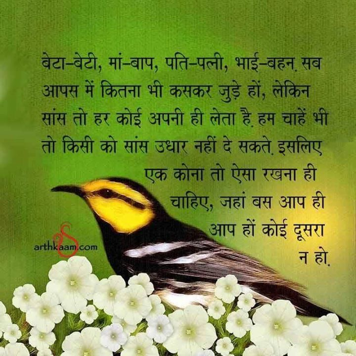 1000+ Images About Hindi Halchal On Pinterest