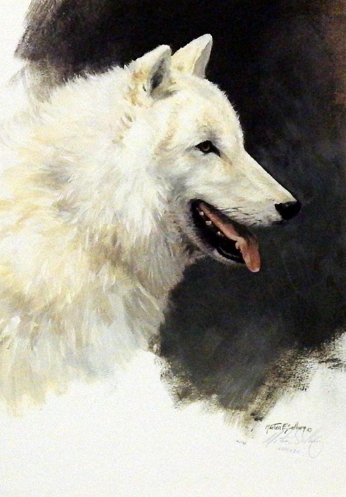 Morton Solberg White Wolf Study