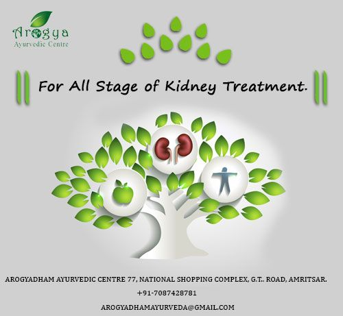 The first and most important step of our treatment is to repair damaged kidney tissue upto the workable useful margins.Creatinine and Blood Urea levels are generally raised from dangerous levels when kidney failure patient contact us. These levels are usually gradually rolling back to their normal levels with our Ayurvedic Treatment. But it is also the fact that despite the level of our medicines being