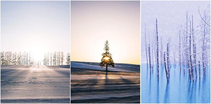 北海道「富良野」「美瑛」滑雪自由行必玩景點:三天兩夜私房 ...