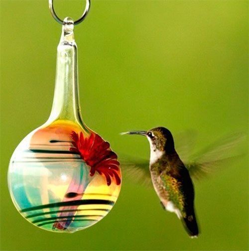16 best cool hummingbird feeders images on pinterest hello and happy pinning drop messages here mozeypictures Gallery