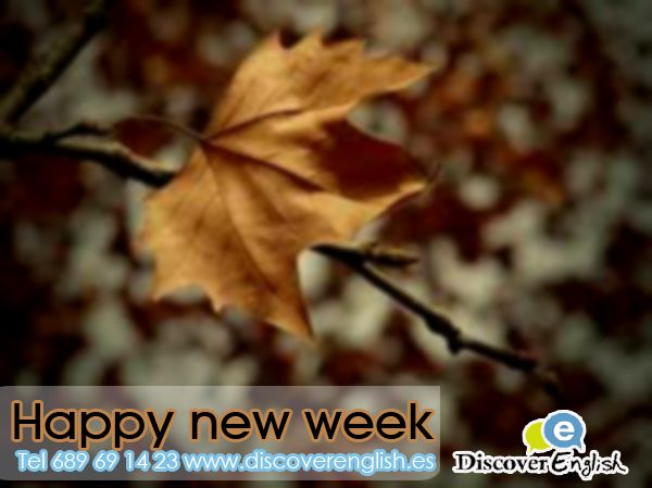 happy new week from discover english in Fuente Alamo