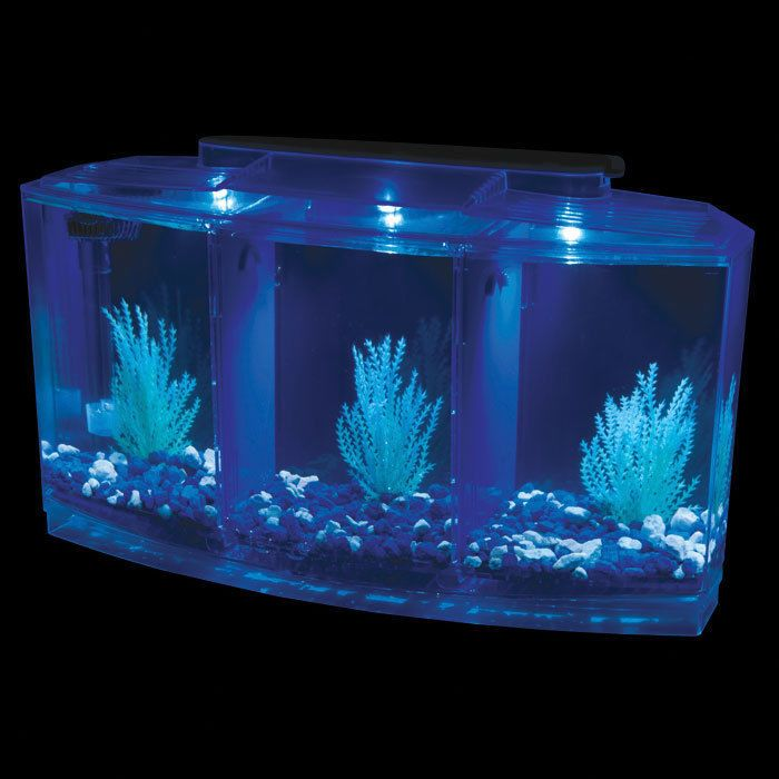 21 best images about penn plax aquariums on pinterest for Betta fish light