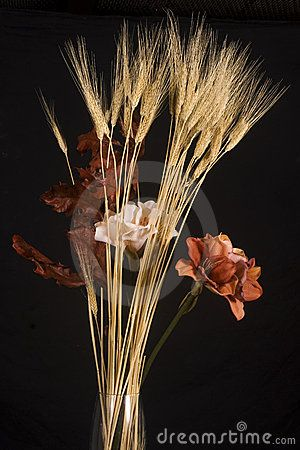 A dried flower arrangement on a black background.