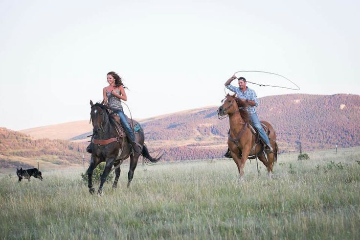 couple and horses