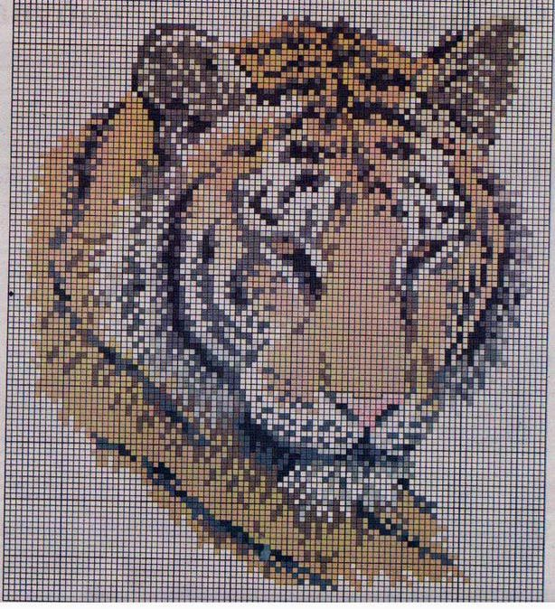 Gallery.ru / Foto # 1 - Tigre - kaetzchen