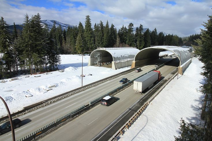 Elk and other wildlife around Snoqualmie Pass will have an easier time getting over Interstate 90 by the fall of 2019 when the first of 16 animal crossings is finished.