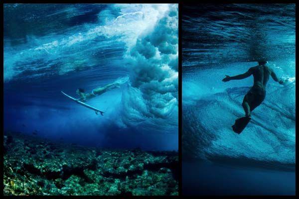 Эпические подводные фотографии Sara Lee.