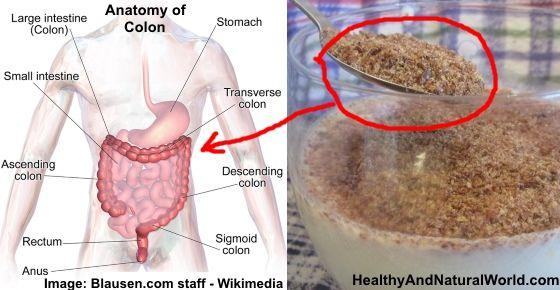 Jak w banalny sposób oczyścić jelito grube, pozbyć się toksyn i odzyskać witalność. – Warsztat Dobrego Słowa