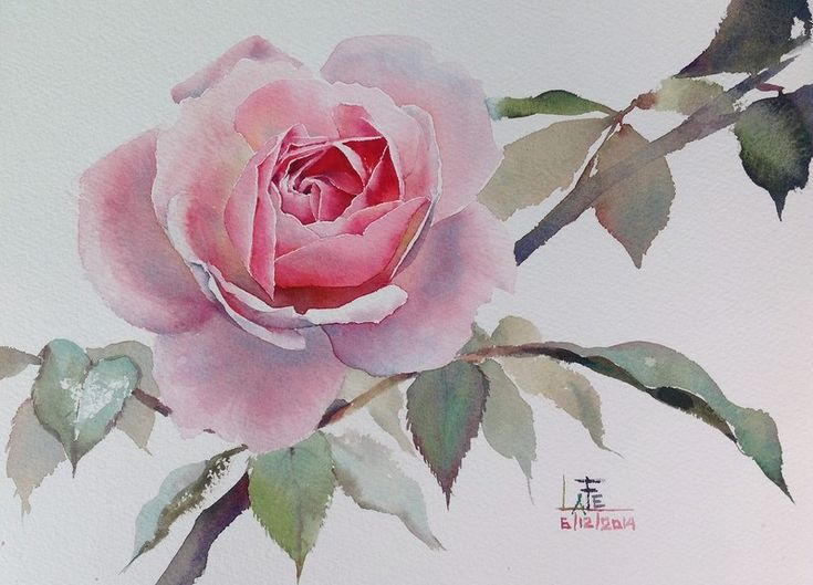 La fe aquarelle rose for Pinterest aquarell