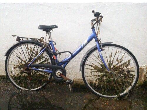 Bosham bike - MM