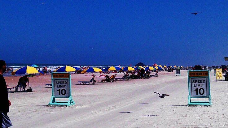Speed dating daytona beach fl