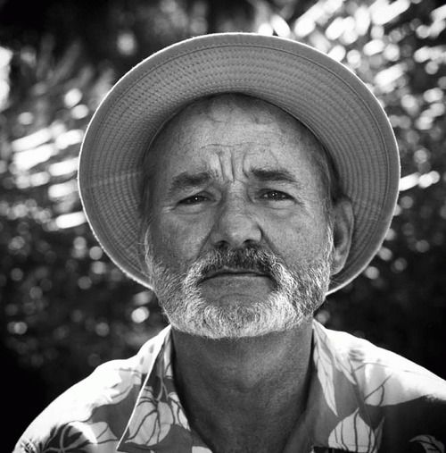 """bill murray  - only a face? hier sind noch mehr tolle """"faces"""""""
