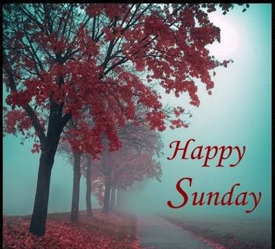 Happy sunday images for whatsapp dp