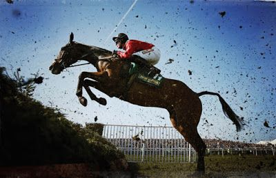 Horse Trainer Directory : The Grand National 2018: Betting Like A Lion