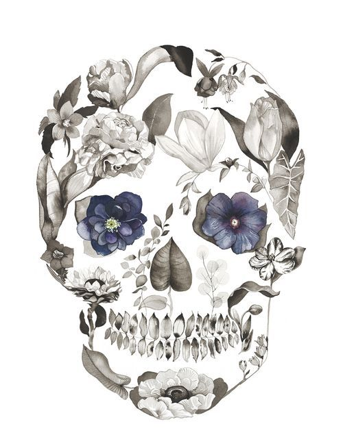 Hellebore by Sarah Voyer watercolor flower skull